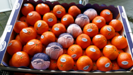 Kistje mandarijnen