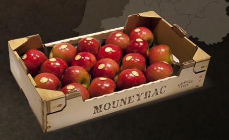 Kistje rode appels