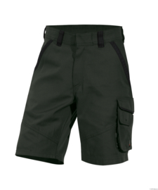 Dassy Canvas Werkshort Smith