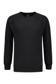 Heavy Sweater Raglan Crewneck