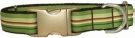 Bella Barkley Streep groen halsband en lijn