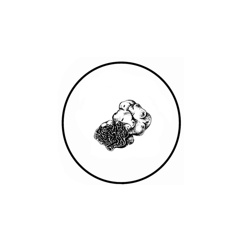 Witte Truffelolie