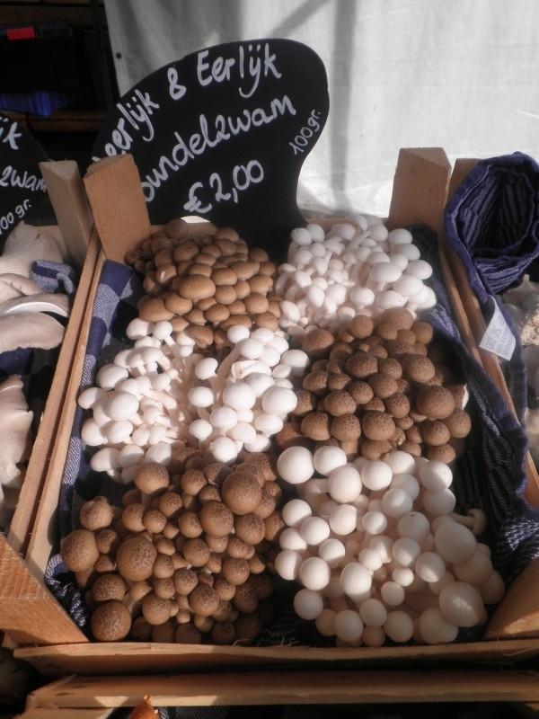 Bruine Bundelzwam (Shimeji) 100 gram