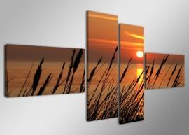 Duinen / Sunset