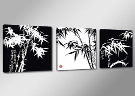 Bamboe Zwart Wit