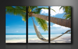 Palmboom Hangmat