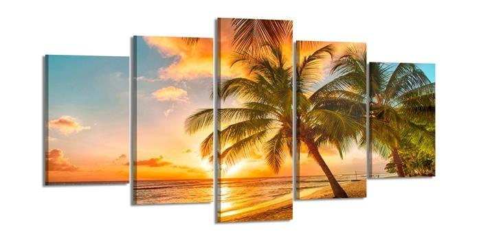 Palmboom Strand Sunset
