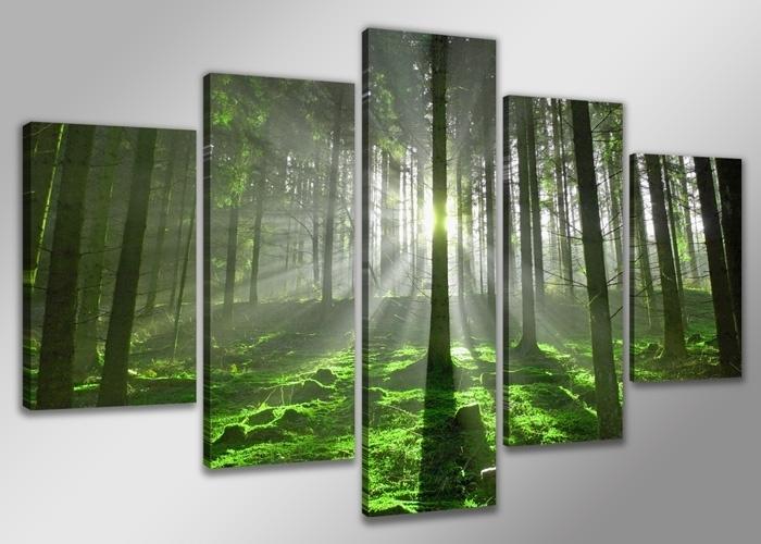 Green Forrest XXL
