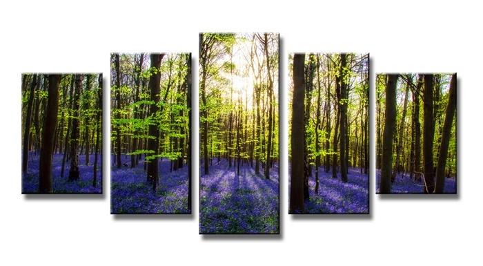 Lavendel Bomen