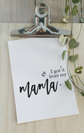 i got it from my MAMA - postcard
