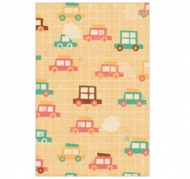 Pastel Gift Tags - Auto's