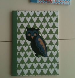 Notebook Owls in Woods