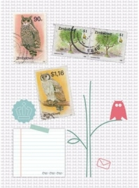Postcards owls