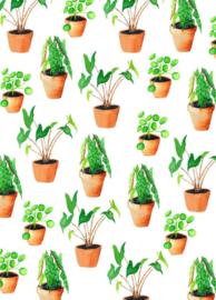 Fritsy kaart planten