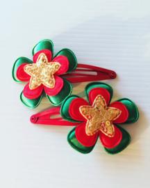 Haarspeldjes:Rood/groen met ster