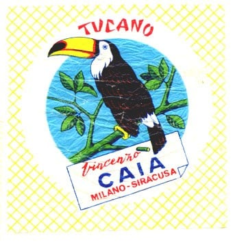 caiatucanovogelvloei.jpg