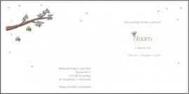 Geboortekaartje `de Bijenkoningin`