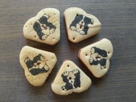 Hondenkoekjes zalmharten