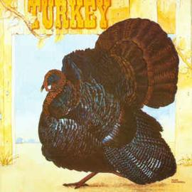 Wild Turkey – Turkey