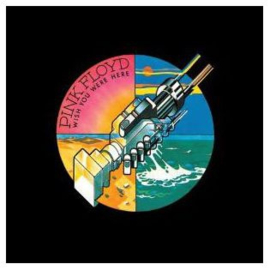 Pink Floyd - Wish You Were Here (Remastered 180 grams vinyl)