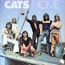 Cats – Home