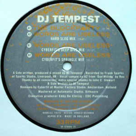 DJ Tempest ‎– The Blockparty / Words Are Useless