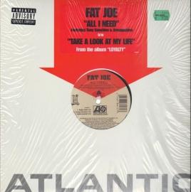 Fat Joe - All I Need