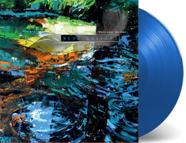 Blue Guitars - While Away the Time (Blue Vinyl) LP & CD