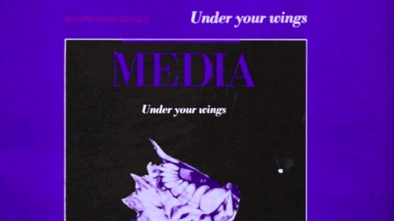 Media - Under Your Wings