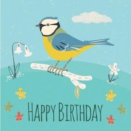 Happy Birthday Pimpelmees