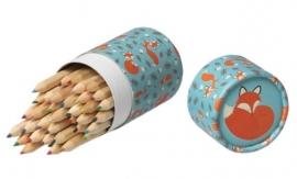 36 kleurpotloden in koker - Rusty de Vos