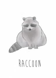 Nikki Dotti Ansichtkaart Raccoon