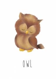 Nikki Dotti Ansichtkaart Owl