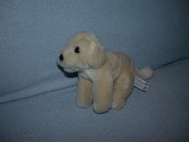 H-922  Anna Club Plush hond/labrador - 18 cm