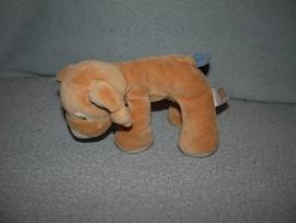 H-722  Happy Horse hondje Doris 2000 - 18 cm