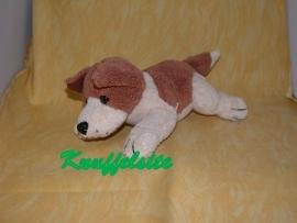Honden onbekend