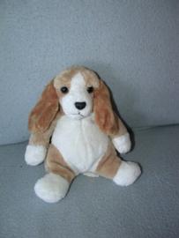 H-878  Sophie@peluche.be hondje / Beagle