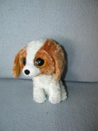 H-864  Onbekend hondje met grote ogen - 15 cm