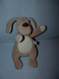 H-912  Sucre d'Orge hond - 24 cm