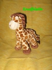 AJ-482 Z  Tiamo giraffe - 21 x 19 cm