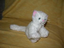 Katten onbekend