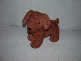 H-829  Zeeman hond - 27 cm