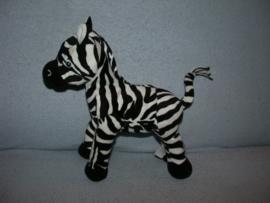 QZ-231  H&M zebra