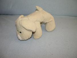 H-249  Happy Horse dog Stanley nr.2  2003 - 20 cm
