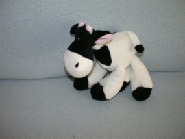 KP-997  Evora koe