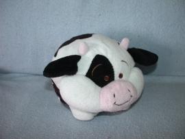 KP-1536  Evora bolle koe