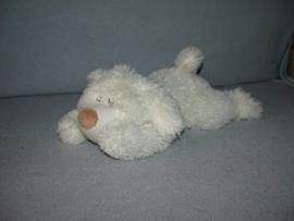 H-854  Onbekende slapende hond - 36 cm