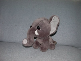 Olifanten onbekend