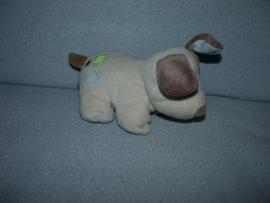 H-1070  Carter's hondje - 18 cm