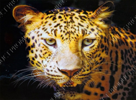 "Diamond painting ""Leopards head"""